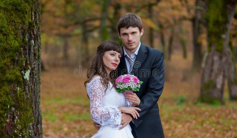 Νύφη Brunette και νεόνυμφος, τοπίο στοκ φωτογραφία με δικαίωμα ελεύθερης χρήσης