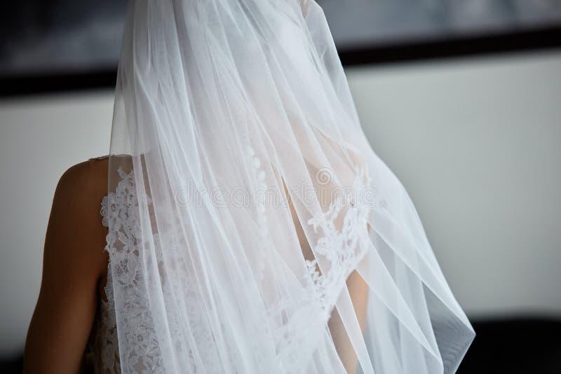 Νύφη ` s όμορφη πίσω στο γαμήλιο φόρεμα στοκ φωτογραφίες