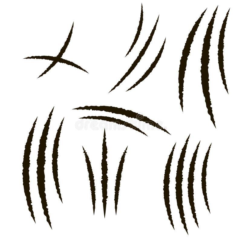 Νύχι του ζώου, γρατσουνιά διάνυσμα διανυσματική απεικόνιση