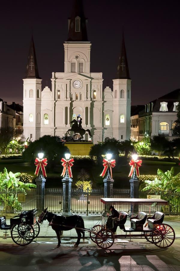 νύχτα Άγιος του Louis καθεδρικών ναών στοκ φωτογραφίες με δικαίωμα ελεύθερης χρήσης