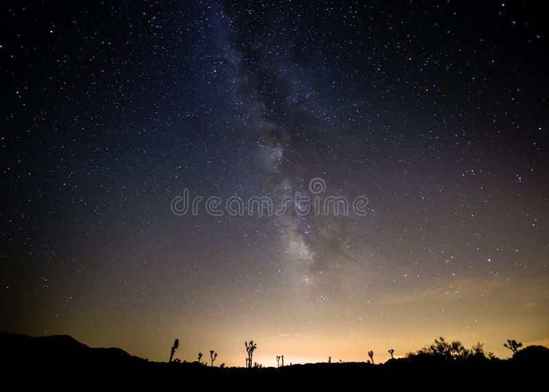 Νύχτα στο εθνικό πάρκο δέντρων του Joshua στοκ εικόνα με δικαίωμα ελεύθερης χρήσης