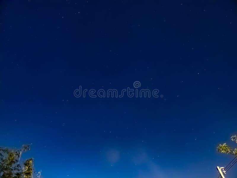 Νύχτα του ουρανού με το δέντρο στοκ φωτογραφίες