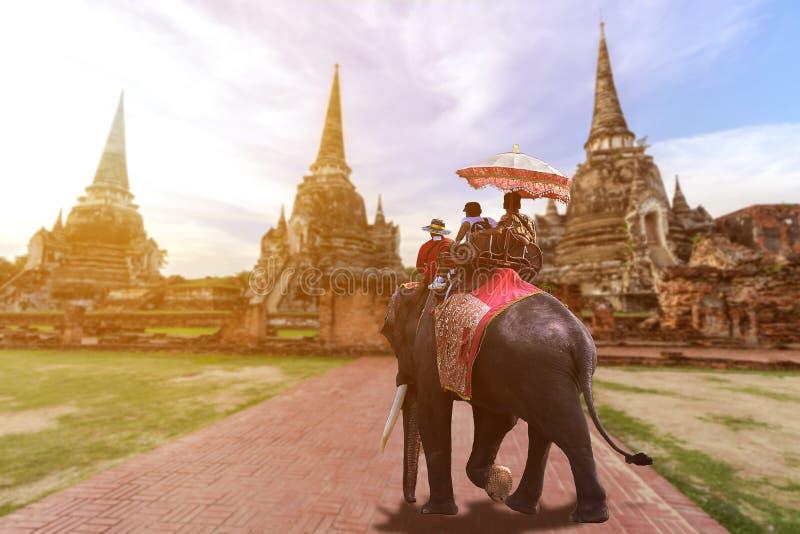 Ξένος γύρος ελεφάντων τουριστών για να επισκεφτεί Ayutthaya στοκ φωτογραφία