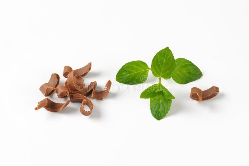 Ξέσματα και melissa σοκολάτας στοκ φωτογραφία με δικαίωμα ελεύθερης χρήσης