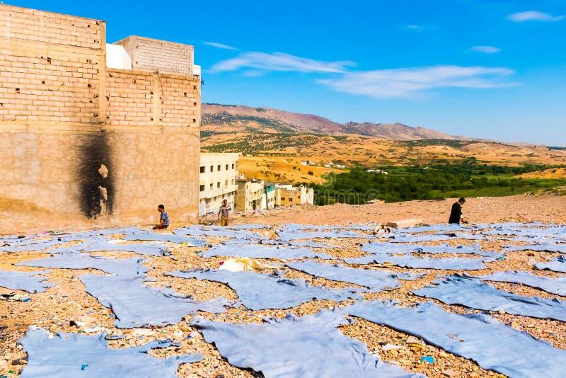 Ξήρανση δέρματος στο φλοιό στο αρχαίο medina Fes, Μαρόκο, Αφρική στοκ φωτογραφία με δικαίωμα ελεύθερης χρήσης