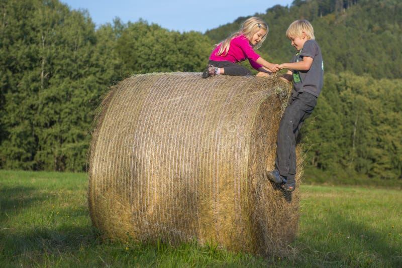 Ξανθά κορίτσι και αγόρι παιδιών (αμφιθαλείς) που στηρίζονται στο δέμα σανού, καλοκαίρι, διακοπές, χαλάρωση, παιχνίδι στοκ εικόνες με δικαίωμα ελεύθερης χρήσης