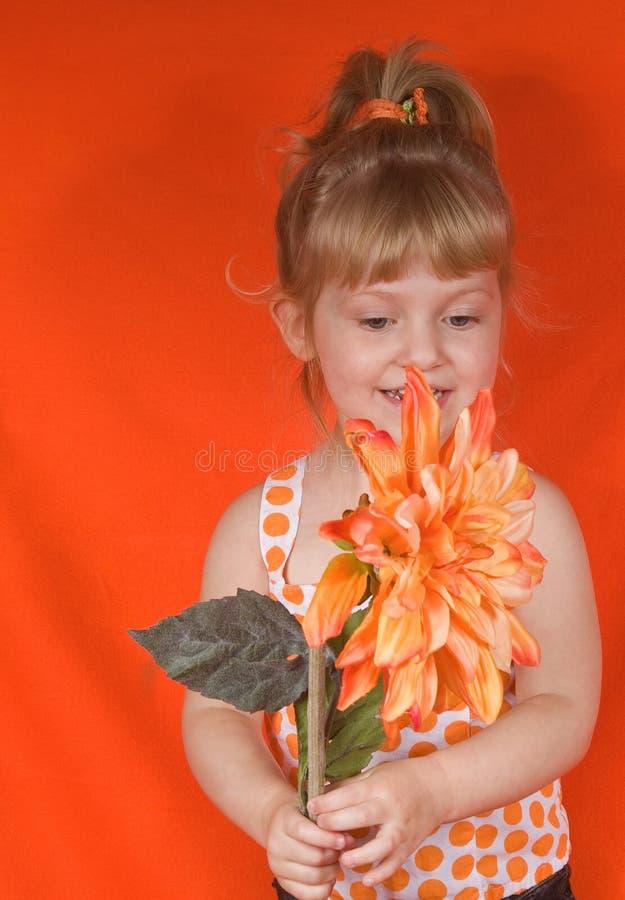 ξανθό πορτοκάλι κοριτσιών στοκ εικόνες
