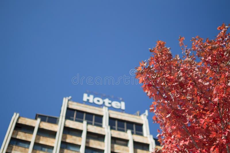Ξενοδοχείο και φύλλωμα φθινοπώρου Pristina, Κόσοβο στοκ εικόνες με δικαίωμα ελεύθερης χρήσης