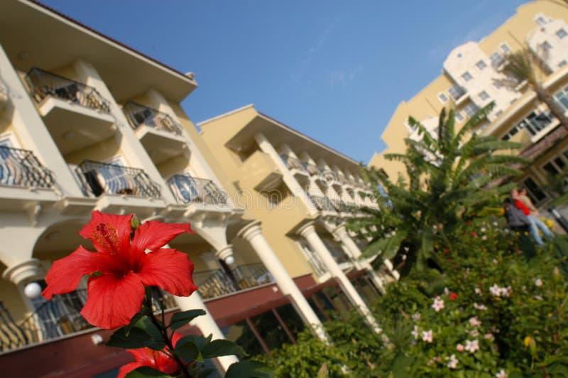 Download ξενοδοχείο στοκ εικόνες. εικόνα από κατάδυση, κορίτσι - 1548244