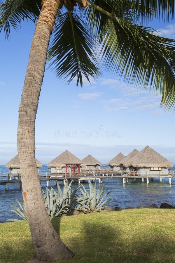 Ξενοδοχείο LE Meridien Ταϊτή, Pape'ete, Ταϊτή, γαλλική Πολυνησία στοκ εικόνες με δικαίωμα ελεύθερης χρήσης