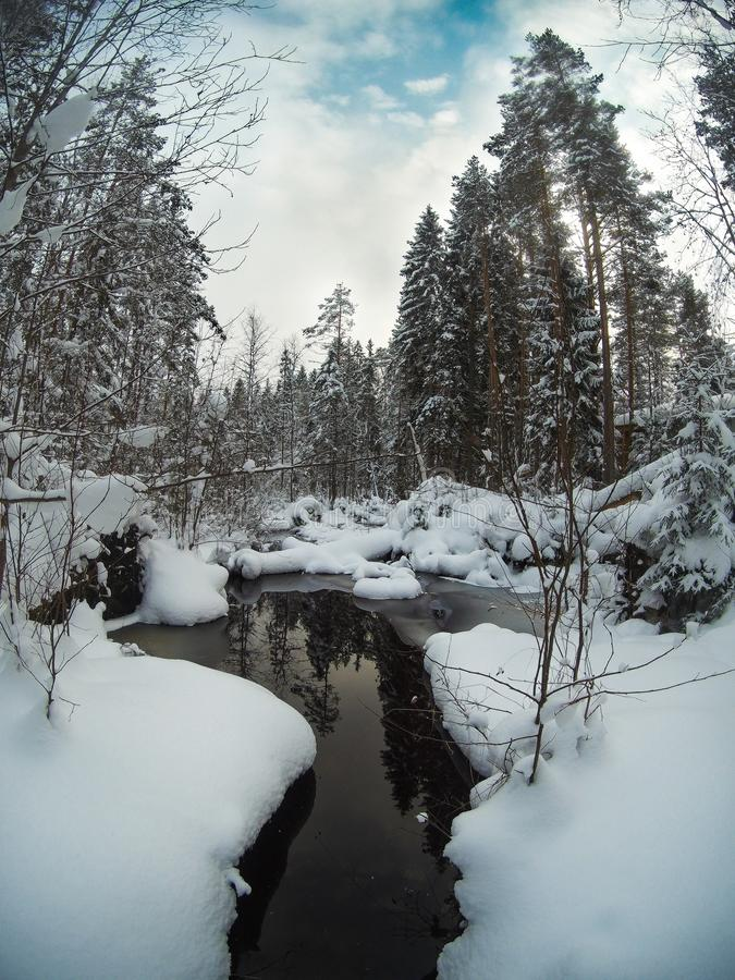 Ξεπαγωμένος κολπίσκος στο χιονώδες δασικό χειμερινό τοπίο πεύκων στοκ φωτογραφία