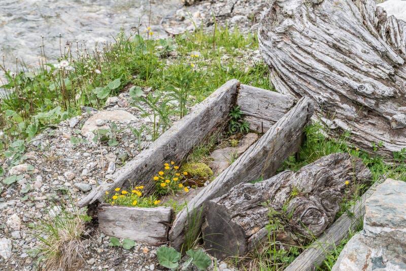Ξεπερασμένη ξύλινη γούρνα, Αυστρία στοκ φωτογραφία με δικαίωμα ελεύθερης χρήσης