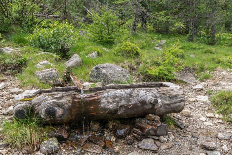 Ξεπερασμένη ξύλινη γούρνα για το φρεάτιο νερού, Αυστρία στοκ φωτογραφίες