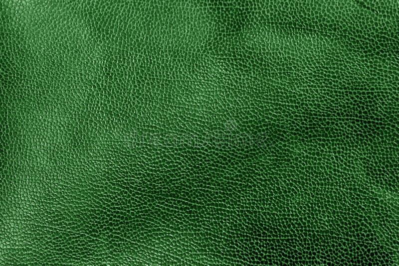 Ξεπερασμένη σύσταση δέρματος στον πράσινο τόνο στοκ εικόνες με δικαίωμα ελεύθερης χρήσης