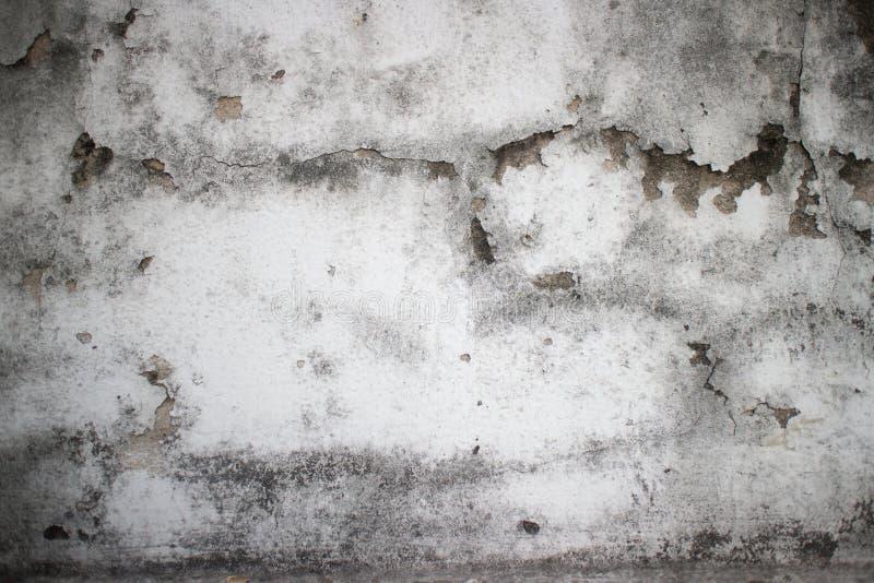 Ξεπερασμένη moldy λεπτομέρεια του παλαιού αποικιακού τοίχου στα WI της Νοτιοανατολικής Ασίας στοκ εικόνες