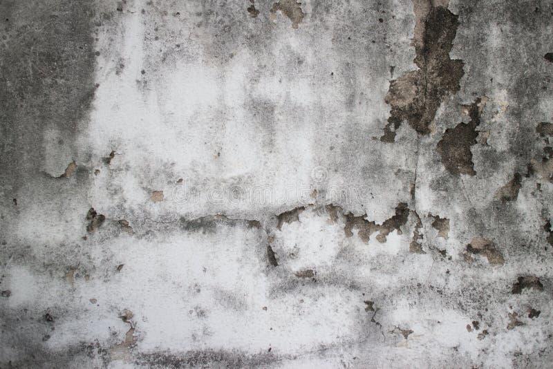 Ξεπερασμένη moldy λεπτομέρεια του παλαιού αποικιακού τοίχου στο Φε της Νοτιοανατολικής Ασίας στοκ φωτογραφία