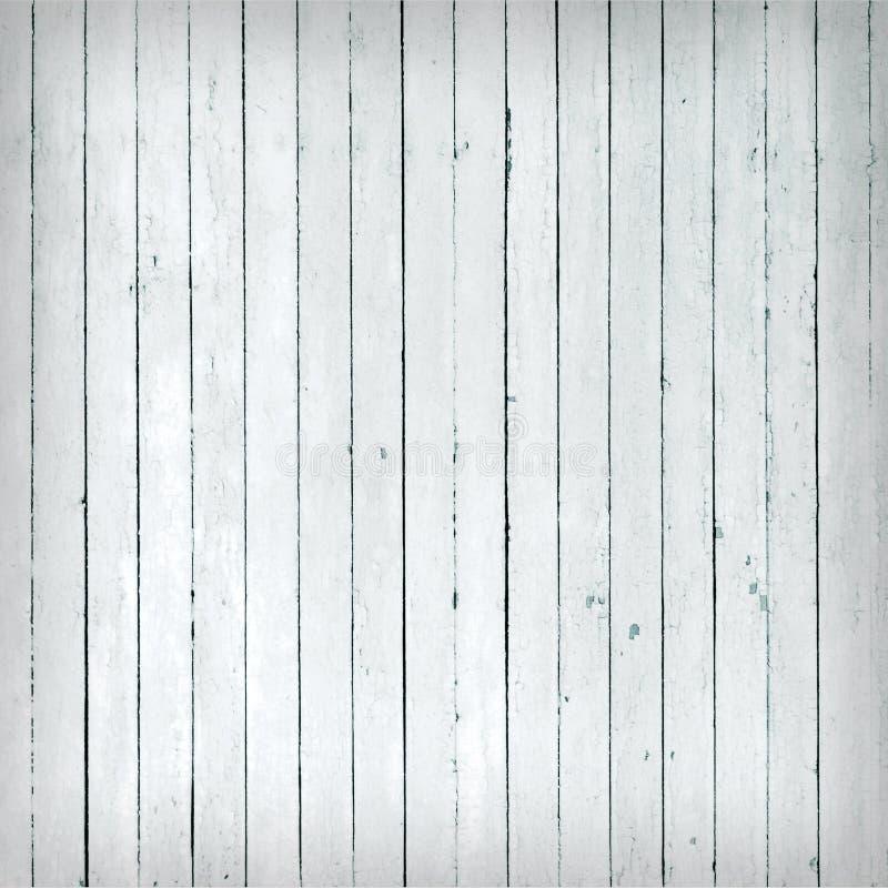 ξεπερασμένο άσπρο δάσος στοκ εικόνες
