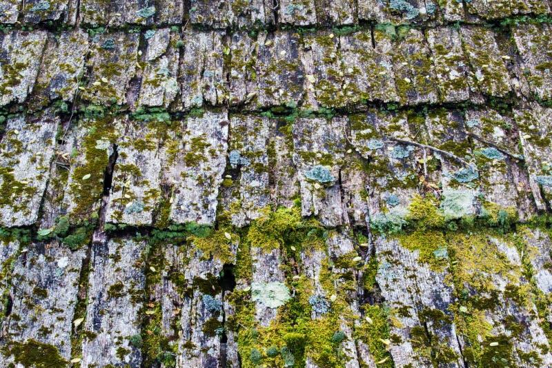 Ξεπερασμένο ξύλινο οριζόντιο υπόβαθρο βοτσάλων †« στοκ εικόνες με δικαίωμα ελεύθερης χρήσης