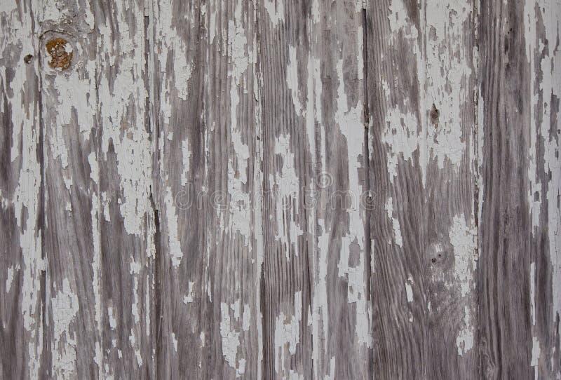 ξεπερασμένο σιταποθήκη δάσος στοκ εικόνες