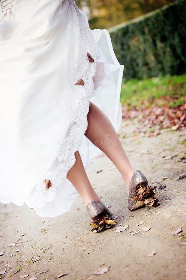Ξεράνετε τα φύλλα στα τακούνια στοκ εικόνα