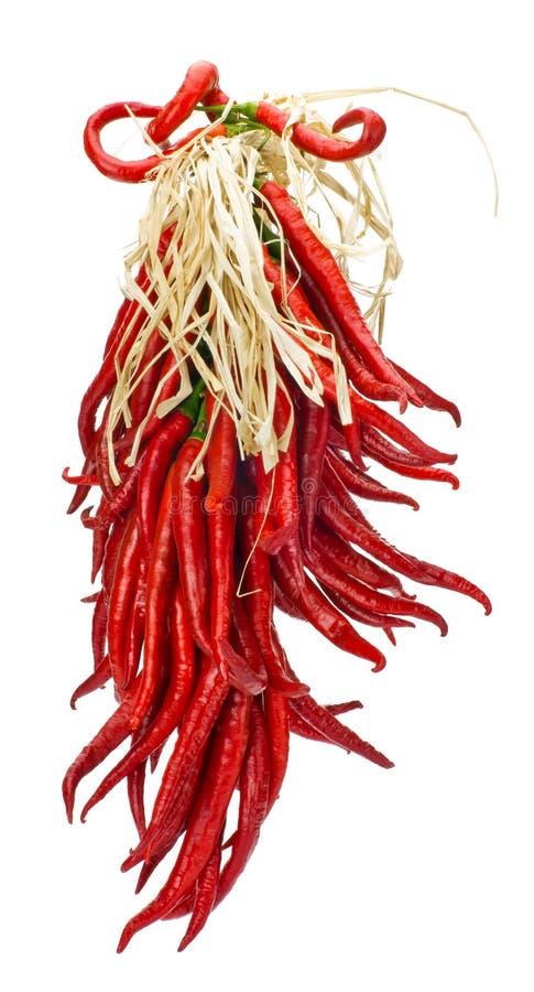 ξεραίνοντας καυτή κόκκινη συμβολοσειρά πιπεριών στοκ φωτογραφία