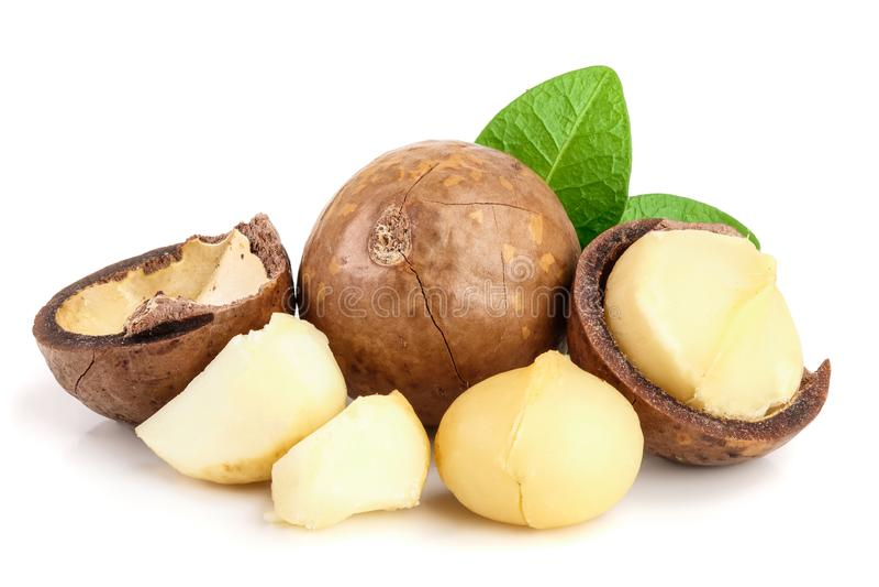 Ξεφλουδισμένα και unshelled macadamia καρύδια με τα φύλλα που απομονώνονται στο άσπρο υπόβαθρο στοκ φωτογραφία με δικαίωμα ελεύθερης χρήσης