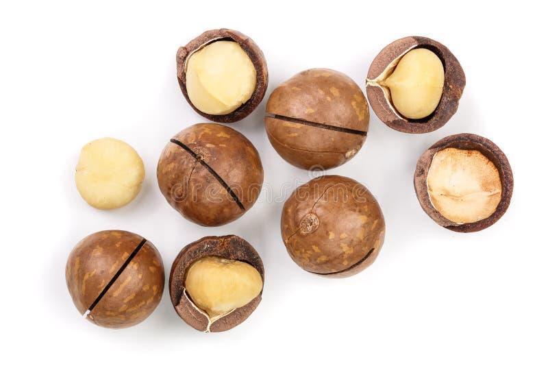 Ξεφλουδισμένα και unshelled macadamia καρύδια που απομονώνονται στο άσπρο υπόβαθρο Τοπ όψη Επίπεδος βάλτε το σχέδιο στοκ εικόνα