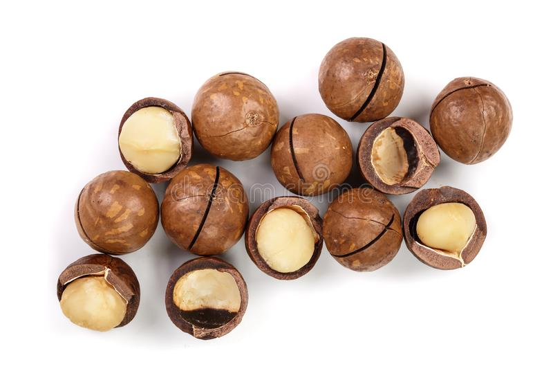 Ξεφλουδισμένα και unshelled macadamia καρύδια που απομονώνονται στο άσπρο υπόβαθρο Τοπ όψη Επίπεδος βάλτε το σχέδιο στοκ φωτογραφίες με δικαίωμα ελεύθερης χρήσης