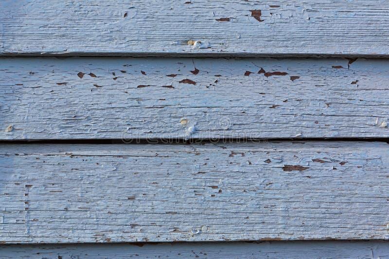 Ξεφλούδισμα του μπλε χρωματισμένου ξύλινου τοίχου στο φως πρωινού στοκ εικόνες