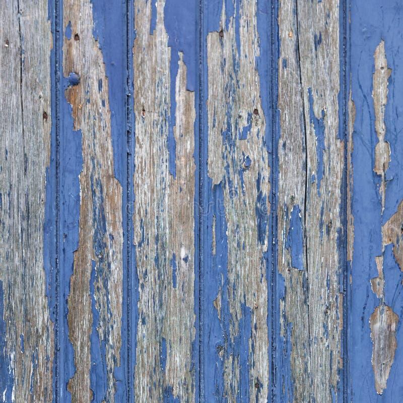 Ξεφλούδισμα του μπλε χρώματος στην ξύλινο πόρτα ή το φράκτη στοκ εικόνες