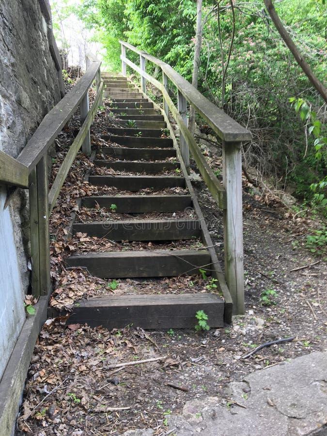 Ξεχαρβαλωμένη σκάλα στοκ εικόνα
