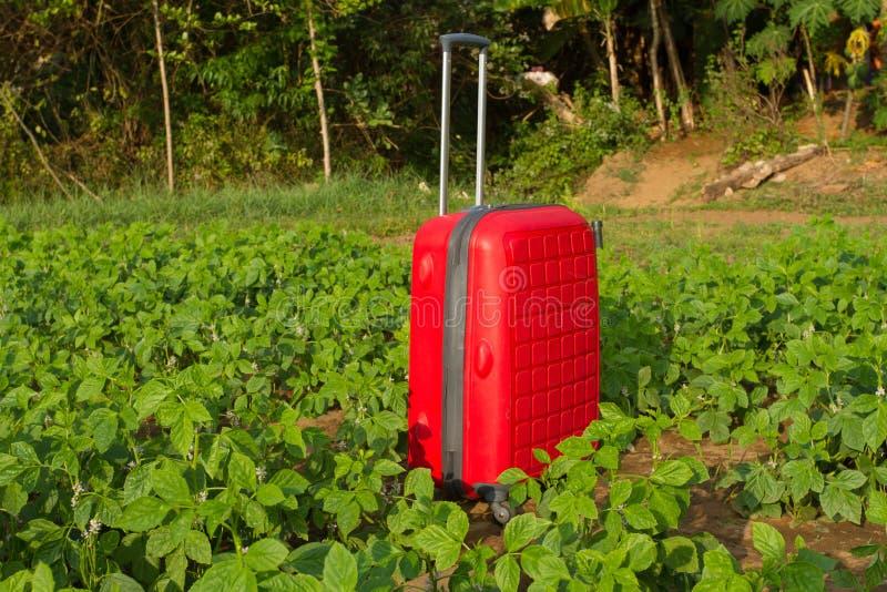 Ξεχασμένες αποσκευές Κόκκινη πλαστική βαλίτσα με τη μακριά λαβή στοκ εικόνες