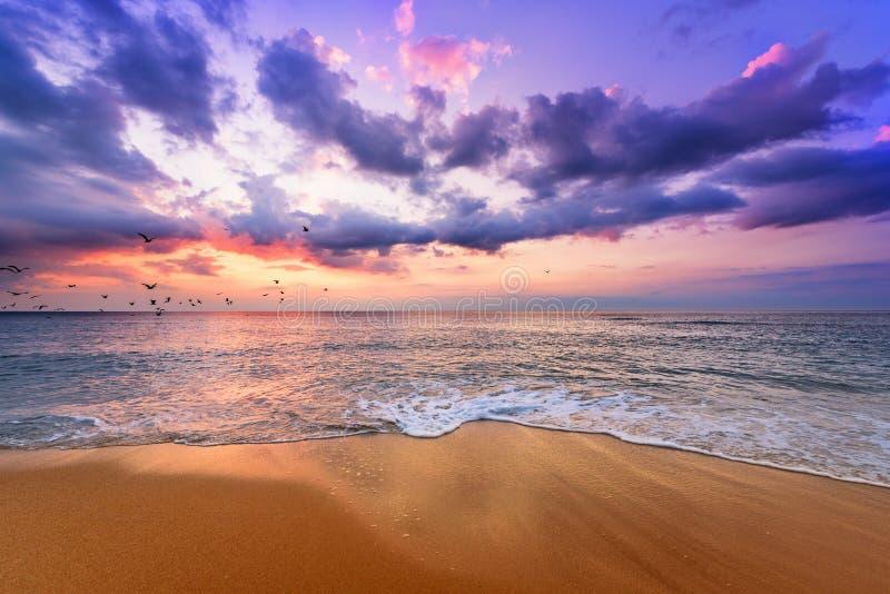 Ξημερώματα, ανατολή πέρα από τη θάλασσα χρυσές άμμοι στοκ εικόνες