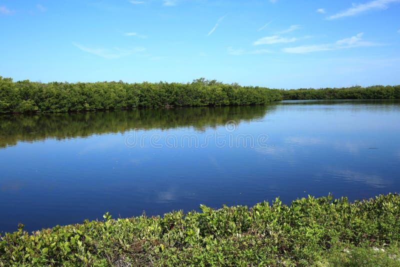 Ξημερώματα σε Ding αγάπη μου στο νησί Sanibel, Φλώριδα, ΗΠΑ στοκ φωτογραφία με δικαίωμα ελεύθερης χρήσης