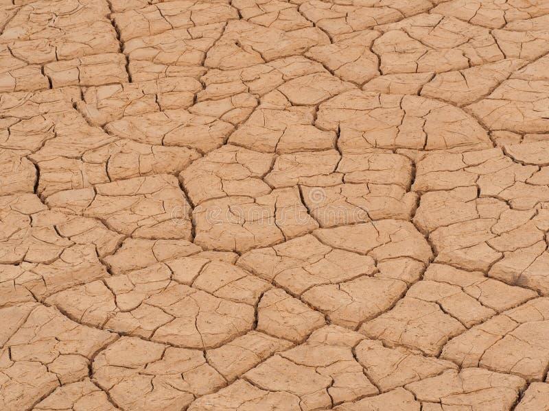 Ξηρά λάσπη στην κοιλάδα θανάτου, Καλιφόρνια στοκ εικόνα