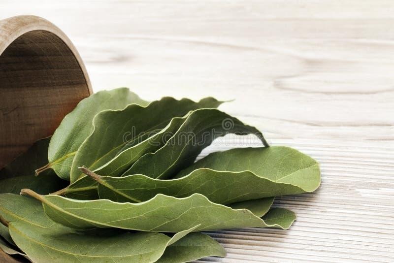 Ξηρά αρωματικά φύλλα κόλπων σε ένα ξύλινο κύπελλο στον άσπρο ξύλινο αγροτικό πίνακα Φωτογραφία της συγκομιδής κόλπων δαφνών για τ στοκ φωτογραφία με δικαίωμα ελεύθερης χρήσης