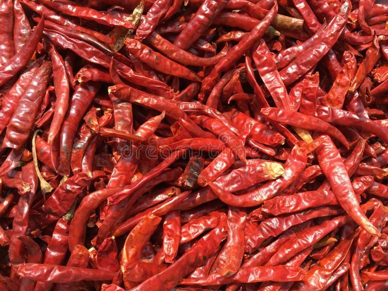 Ξηρά κόκκινη σύσταση τσίλι στοκ φωτογραφία με δικαίωμα ελεύθερης χρήσης