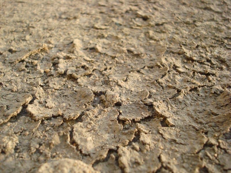 ξηρά λάσπη στοκ φωτογραφία με δικαίωμα ελεύθερης χρήσης
