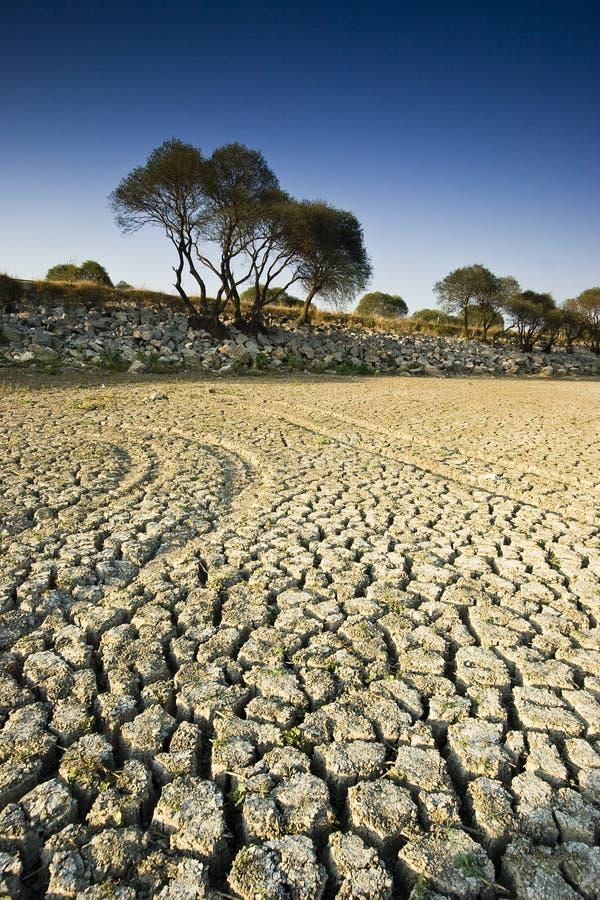 ξηρά λίμνη στοκ εικόνες