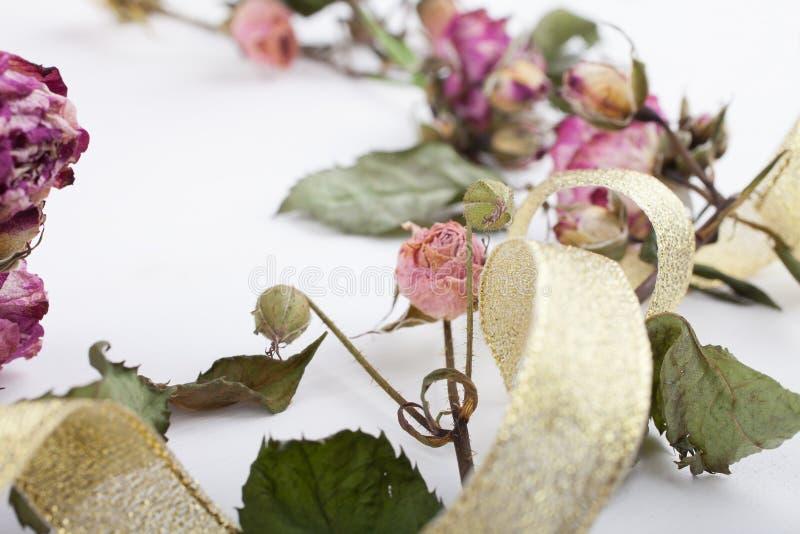 Ξηρά λουλούδια με μια χρυσή κορδέλλα σε έναν λευκό ξύλινο πίνακα στοκ εικόνες
