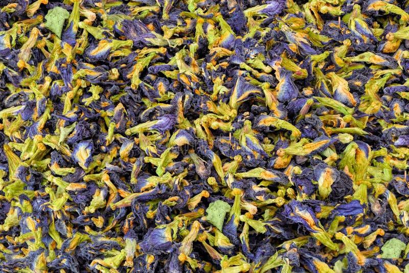 Ξηρά λουλούδια Anchan τσαγιού μπιζελιών πεταλούδων στοκ εικόνα με δικαίωμα ελεύθερης χρήσης