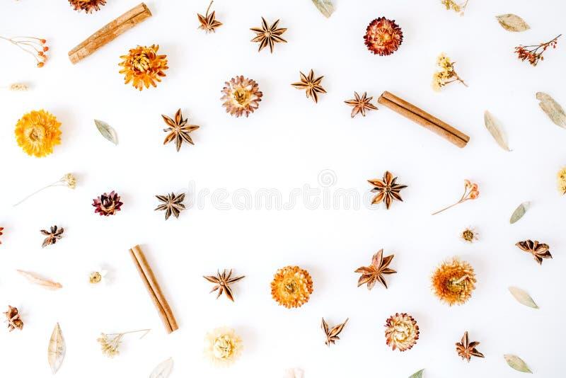 Ξηρά λουλούδια, κανέλα και καρδάμωμο γύρω από το σχέδιο στεφανιών πλαισίων στο άσπρο υπόβαθρο στοκ εικόνα με δικαίωμα ελεύθερης χρήσης