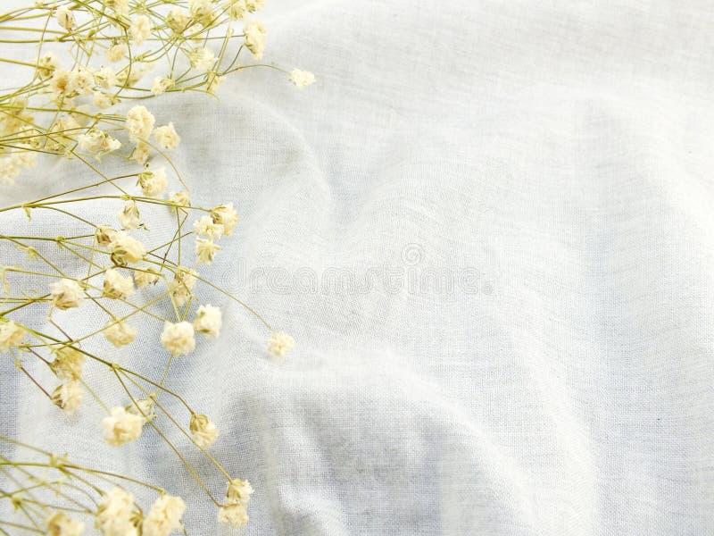 Ξηρά λουλούδια στο υπόβαθρο υφάσματος στοκ φωτογραφίες με δικαίωμα ελεύθερης χρήσης
