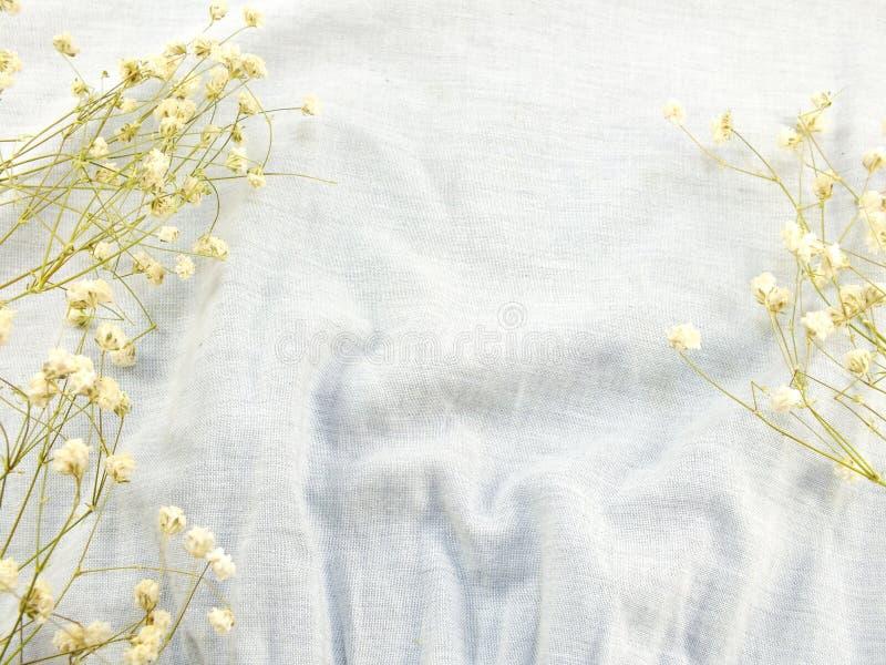 Ξηρά λουλούδια στο υπόβαθρο υφάσματος στοκ εικόνα