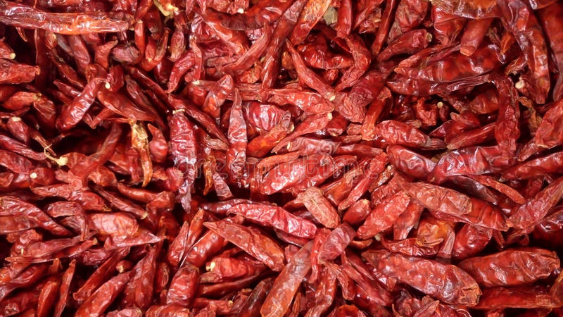 Ξηρά πιπέρια, Ταϊλάνδη στοκ εικόνα