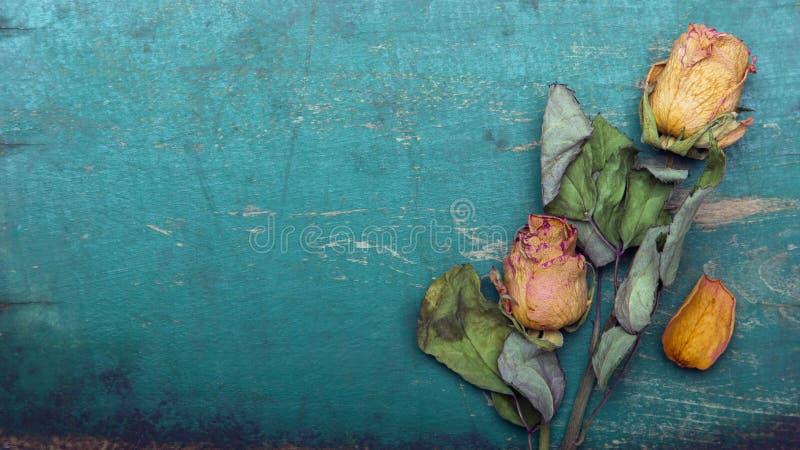 Ξηρά πορτοκαλιά τριαντάφυλλα στο παλαιό μπλε ξύλινο υπόβαθρο, στοκ φωτογραφίες