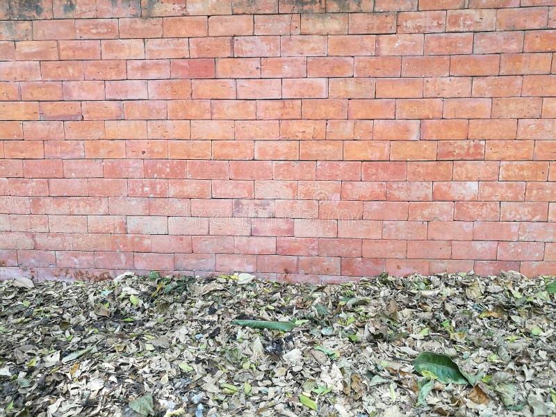 Ξηρά πτώση φύλλων κάτω στο πάτωμα και τον κόκκινο καφετή τοίχο φραγμών τούβλου στον κήπο κατωφλιών στο σπίτι στοκ φωτογραφίες με δικαίωμα ελεύθερης χρήσης