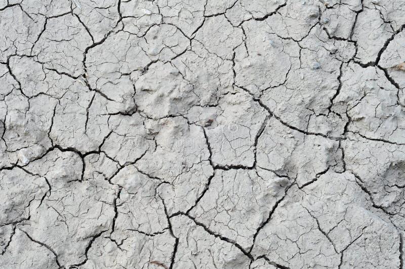 Ξηρά σύσταση λάσπης στοκ φωτογραφίες