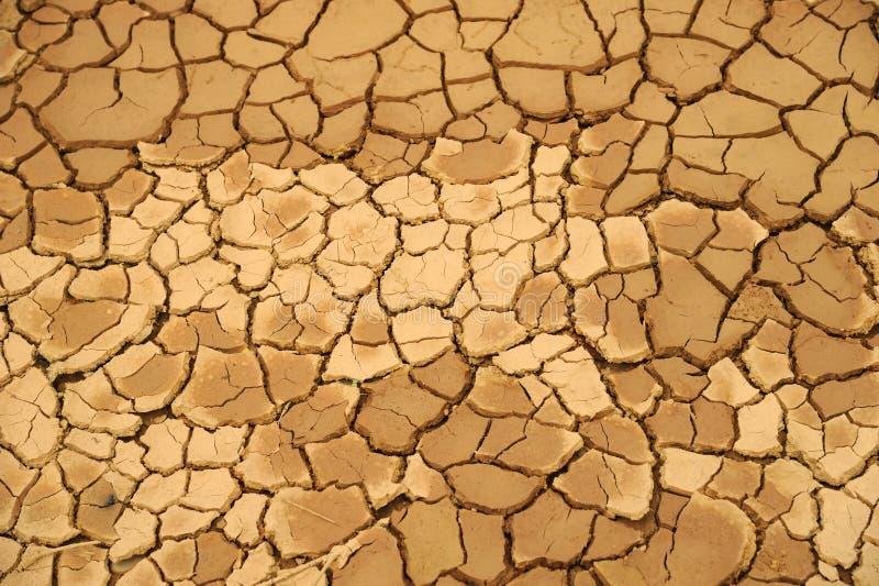 ξηρά σύσταση λάσπης στοκ εικόνα