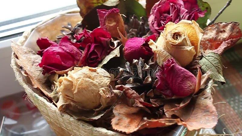 ξηρά τριαντάφυλλα απόθεμα βίντεο